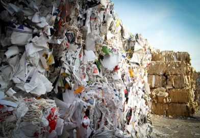 NSW Launches Circular Economy Innovation Network