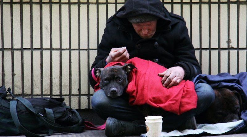 Sector Seeking Urgent Action To End Rough Sleeping Homelessness